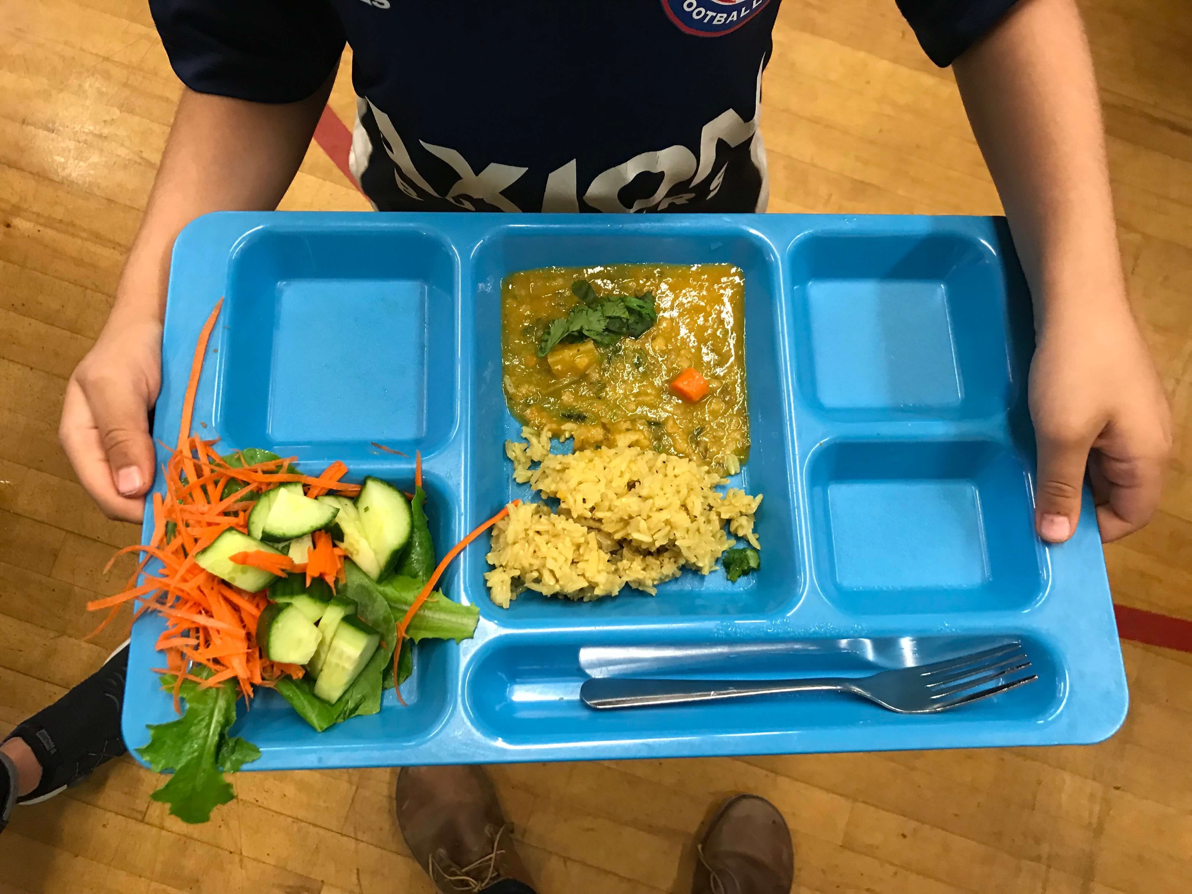 A child holding a lunch tray of food
